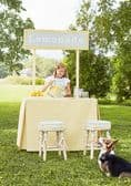 Thibaut Maisie Fabric in Kelly Green
